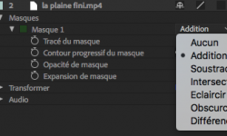 ae-animer_masque.png